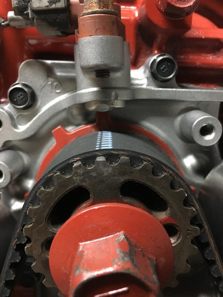 Forchs 97 Brighton Build-img_6870.jpg